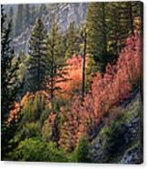 Mountain Side Colors Canvas Print