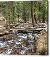 Colorado Mountain Stream 2 Canvas Print