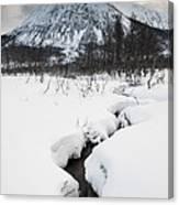 Mountain Stream Canvas Print