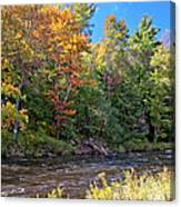 Mountain Stream In Early Autumn Canvas Print