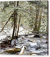 Mountain Stream In Winter Canvas Print