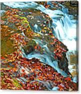Mountain Stream Waterfall Autumn Canvas Print