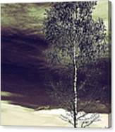 Mountain Tree Canvas Print