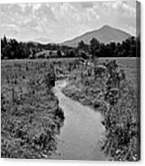 Mountain Valley Stream Canvas Print