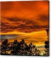 Mountain Wave Cloud Sunset With Pines Canvas Print
