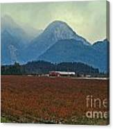 Mountains And Blueberries Canvas Print