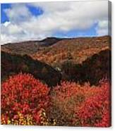 Mountains At Graveyard Fields Canvas Print