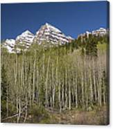 Mountains Co Maroon Bells 23 Canvas Print