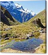 Mountains Of New Zealand Canvas Print