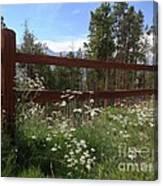 Mountainside Lawn Canvas Print