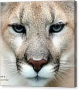 Mountian Lion Canvas Print