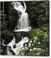 Mouse Creek Falls - Fs000675 Canvas Print