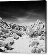 Mouses Tank Trail Valley Of Fire State Park Nevada Usa Canvas Print