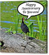 Mouthy Moorhen Anniversary Card Canvas Print