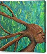 Moving Past The Nature Of Myself Canvas Print