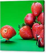 Moving Strawberries To Depict Friction Food Physics Canvas Print