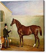 Mr Meakin Holding Sir Robert Peels Chestnut Hunter With His Dogs Hector And Jem Canvas Print