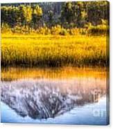 Mt Adams Reflection Canvas Print
