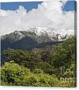 Mt. Aspiring National Park Mountains Canvas Print