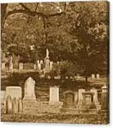 Mt Auburn Cemetery 13 Sepia Canvas Print