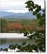 Mt Chocorua Through The Trees Canvas Print