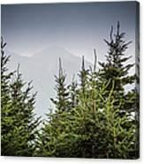 Mt. Mitchell In Fog Canvas Print