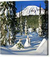 Mt Rainier At Reflection Lakes In Winter Canvas Print
