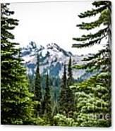 Mt. Rainier Framed Canvas Print