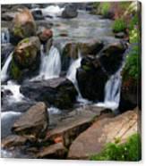 Mt Rainier Mountain Stream Canvas Print