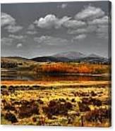 Mt. Silverhills In Silver Canvas Print