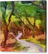 Muckross Woods Canvas Print