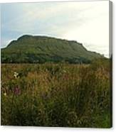 Muckrum Leitrim County Leitrim Ireland Canvas Print
