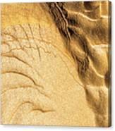Mud Flare Canvas Print