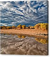 Mud Puddle Canvas Print