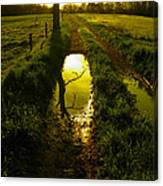 Mudhole Mirror Canvas Print
