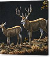 Mule Deer Ridge Canvas Print
