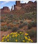 Mule Ears And The Three Gossips - 1 Canvas Print