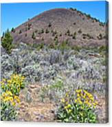 Mule's Ears And Schonchin Butte In Lava Beds Nmon-ca Canvas Print
