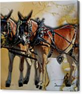 Mules In Full Dress Canvas Print