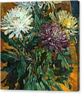 Multi Colored Chrysanthemums Canvas Print
