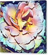 Multicolor Rose Photoart Canvas Print