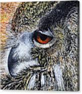 Mumble Canvas Print