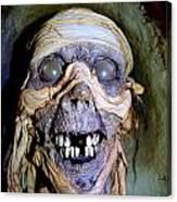 Mummified Mike Canvas Print