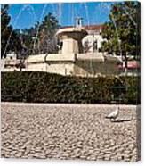 Municipal Square Fountain Canvas Print