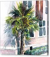 Museum Palm Canvas Print