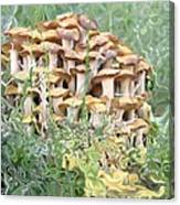 Mushroom Gold Canvas Print