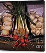 Mushrooms In The Seville Market  Canvas Print