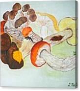 Mushrooms Time Canvas Print
