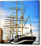 Mushulu At Penns Landing Canvas Print