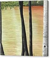 Muskoka Lagoon Canvas Print